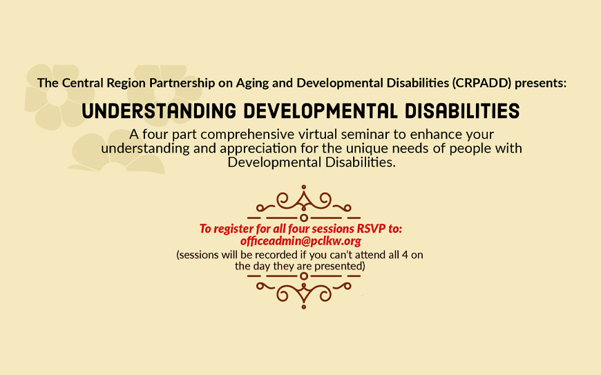 Understanding Developmental Disabilities